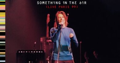 David Bowie-Something-in-the-ai