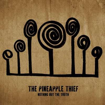 Pineapple Thief Poster
